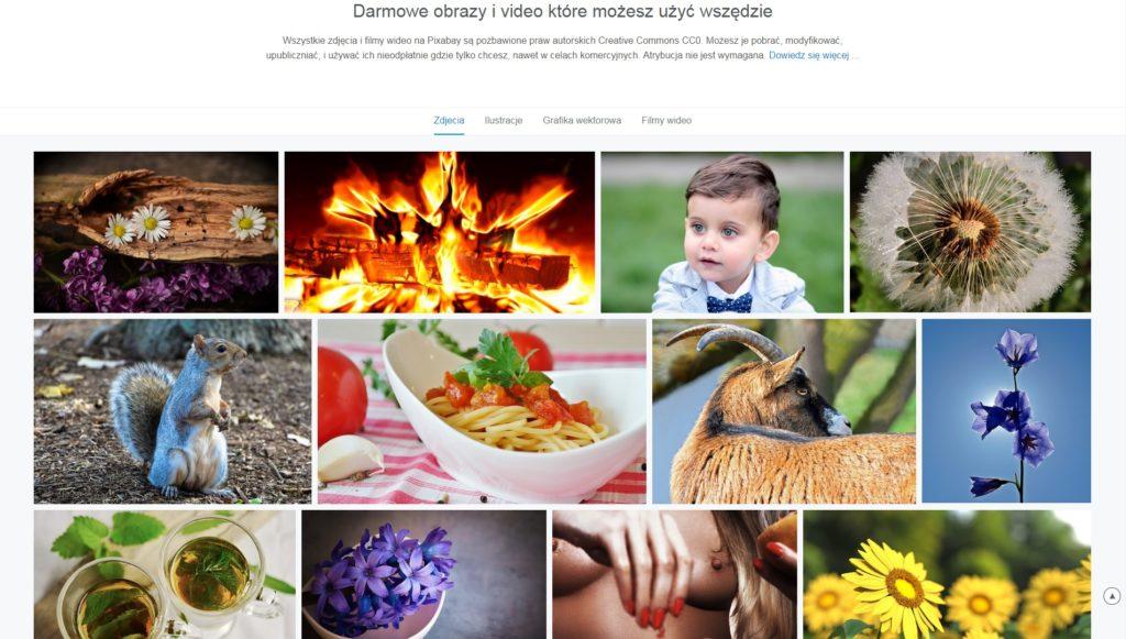 pixabay-darmowe-zdjecia